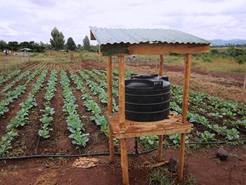 SNV receives 39 5 million grant for smart agriculture