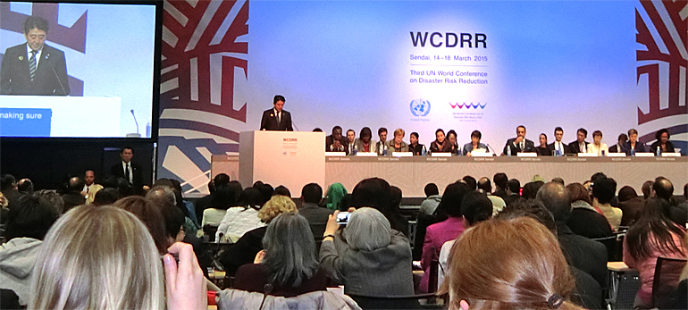 dws-wcdrr-plenary-general-770px