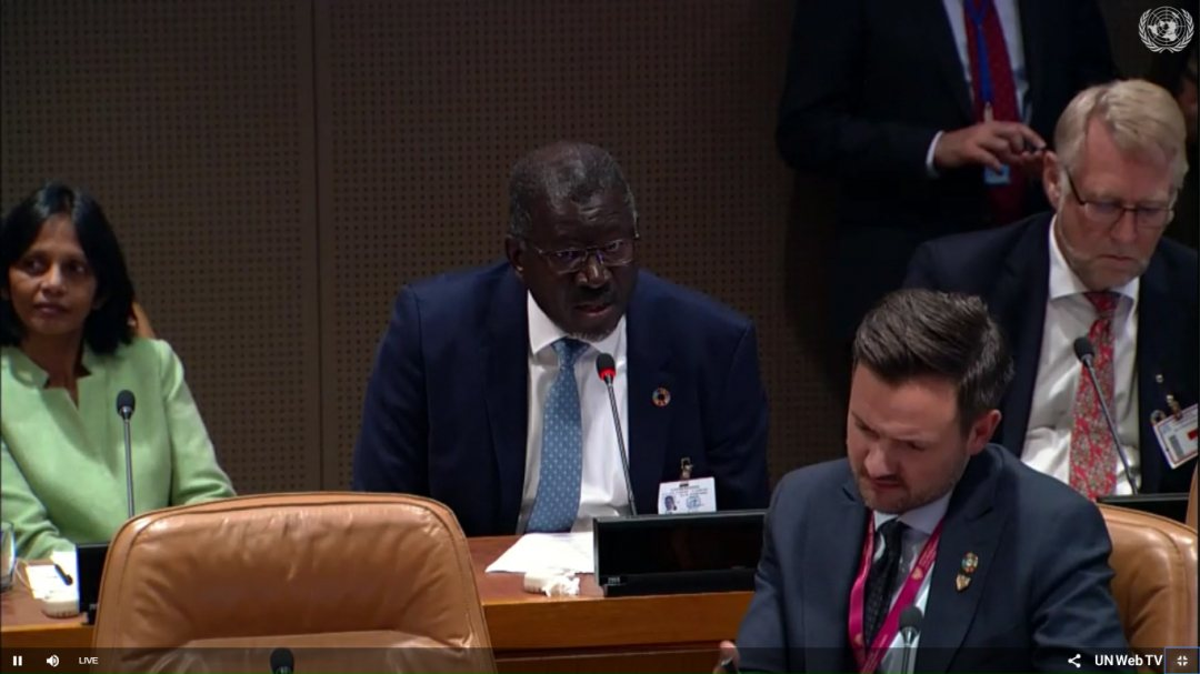 Secretary-general Elhadj As Sy of Red Cross at launch year of action on adaptation at UN headquarters